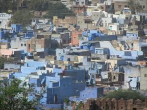 JOdpur ville bleue