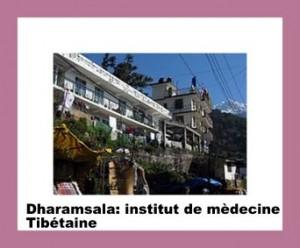 daramsala -Men-tsee-khang soit institut de medecine tibetaine