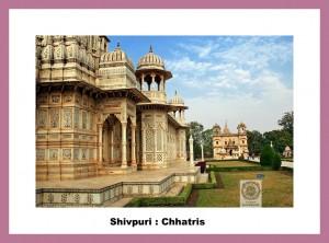 shivpurichhatris-of-shivpuri_700_0